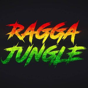 Destination Jungle Radio (Boomshot Guest DJ Mix)